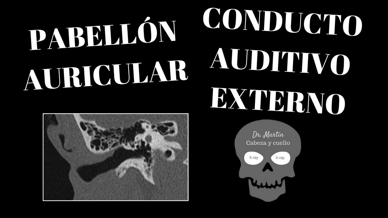 Video 1. Oído externo: anatomía radiológica del pabellón auricular y ...