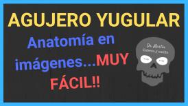 Agujero yugular anatomia radiologica