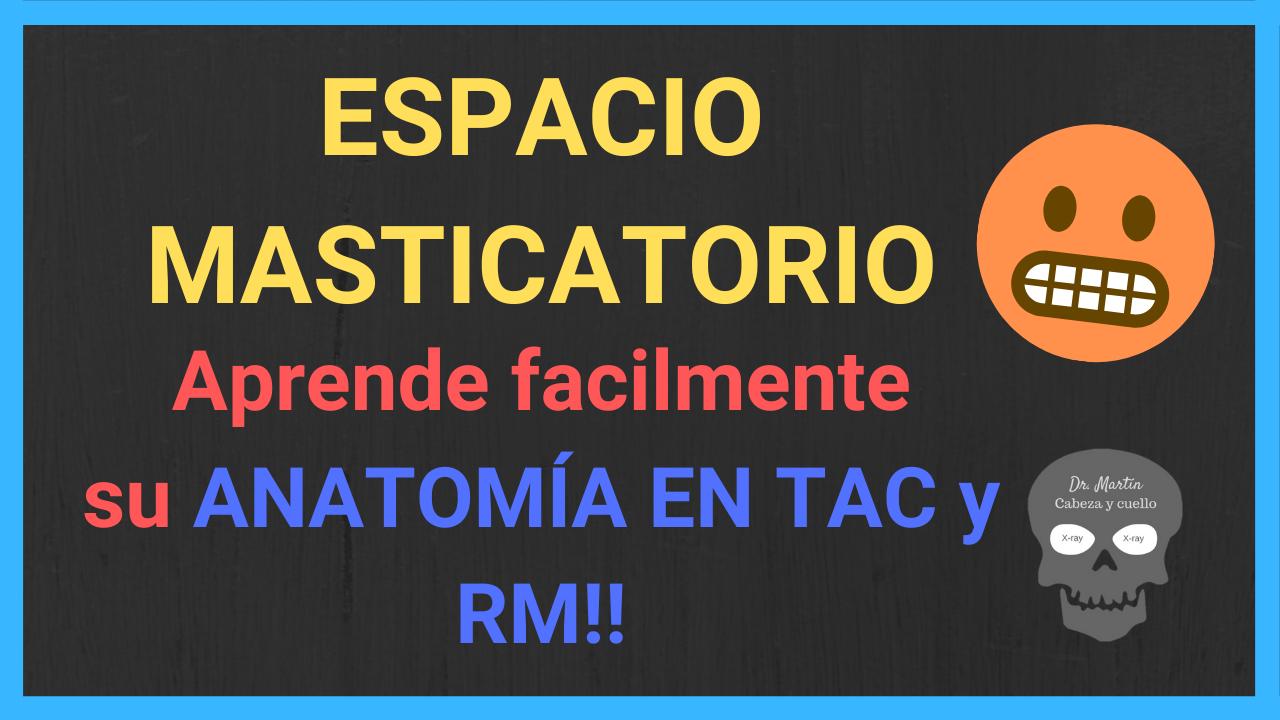 espacio masticatorio-anatomia-tac-RM