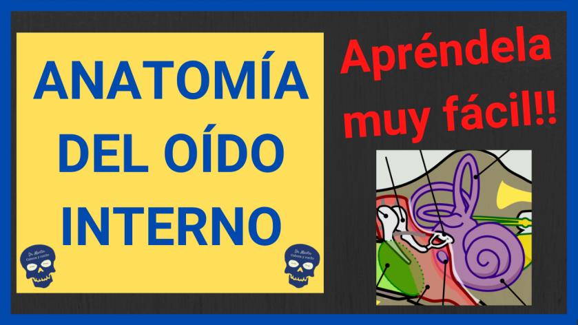 oido interno anatomia